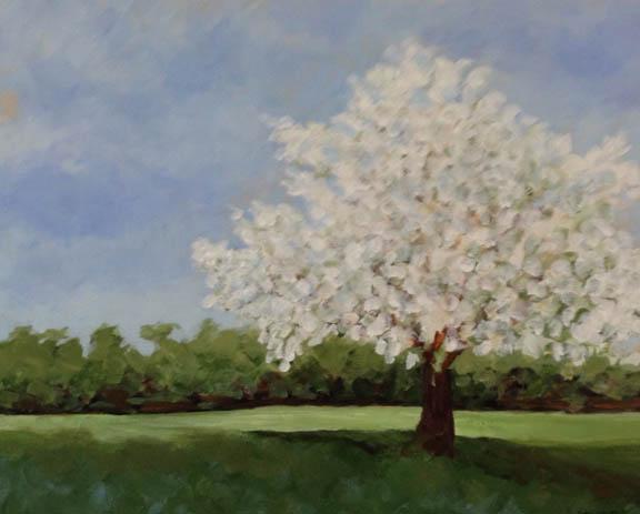 """""""In Bloom"""" by Stuart Weismiller"""