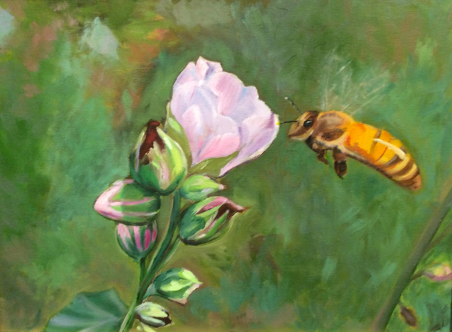Laura Heath, Honey Bee on Marshmallow